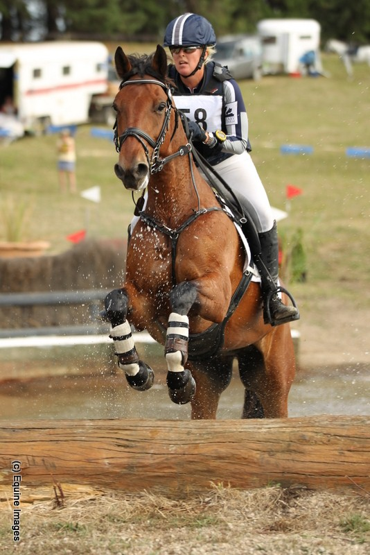 Alex Townsend and her eventing horses | An Eventful Life