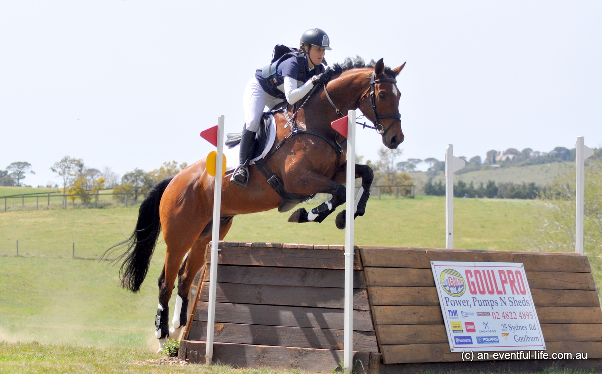 Saturday at Equestriad 2020 | An Eventful Life