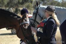 Geelong Horse Trials 2014