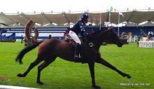 Young Event Horse class Royal Dublin Horse Show 2014