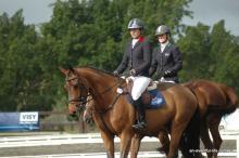 TS World Magic eventing horse