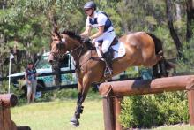 Tinney Eventing Queen Mary