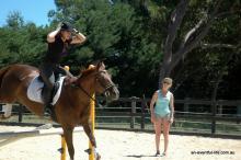 Vittoria Pannizon eventing training exercises