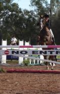 Brookleigh eventing