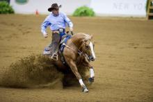 Reining FEI World Equestrian Games