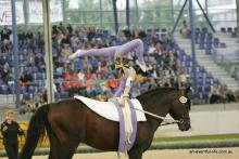 Vaulting FEI World equestrian games